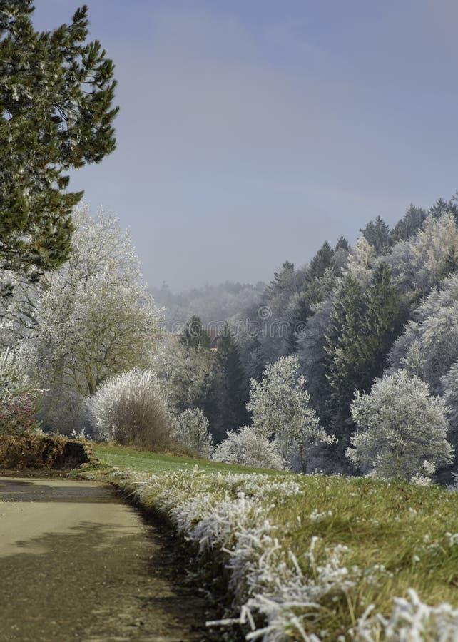 Winter Is Nigh Free Public Domain Cc0 Image
