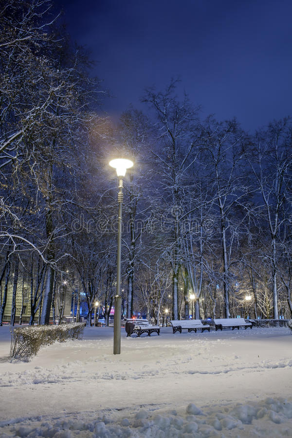 Download Winter in the night city stock image. Image of blizzard - 83711025
