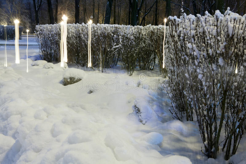 Download Winter in the night city stock photo. Image of reflections - 83711076