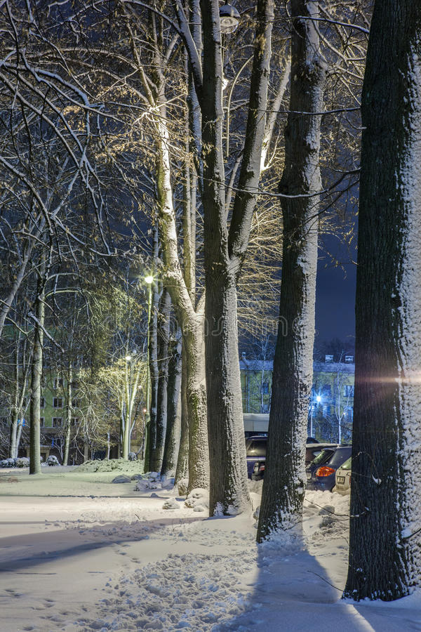 Download Winter In The Night City Stock Photo - Image: 83711514