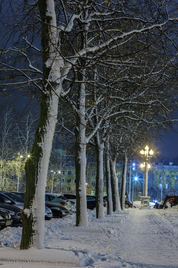Download Winter in the night city stock photo. Image of benches - 83711566