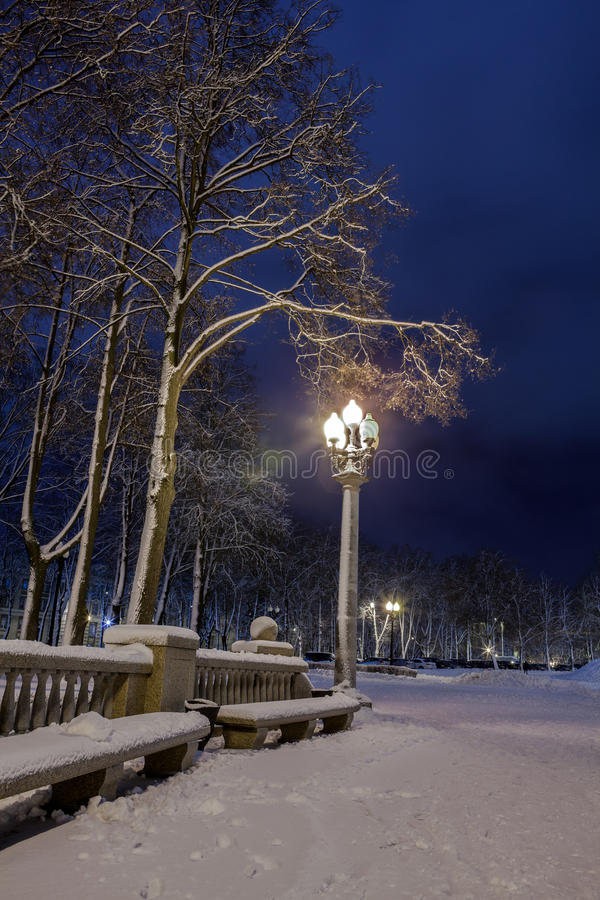 Download Winter in the night city stock photo. Image of benches - 83711786