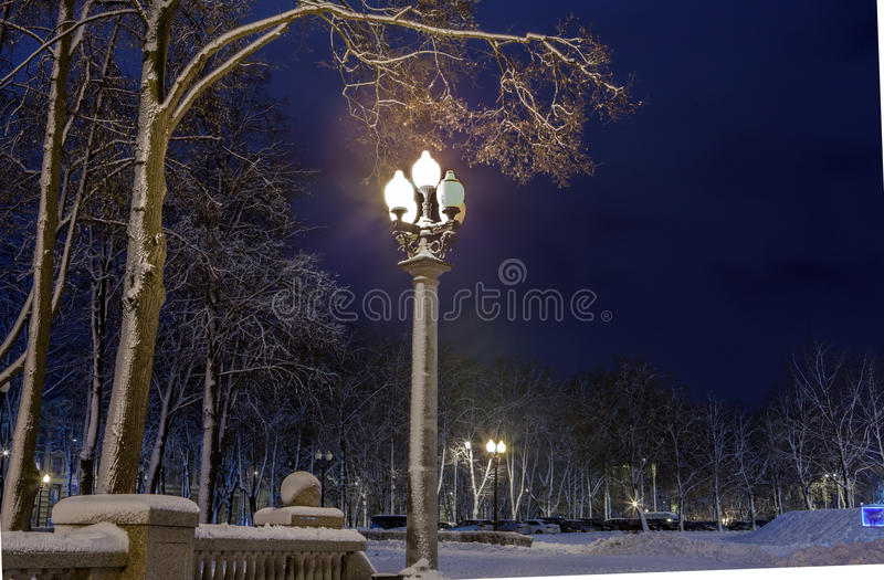 Download Winter in the night city stock photo. Image of lights - 83712644