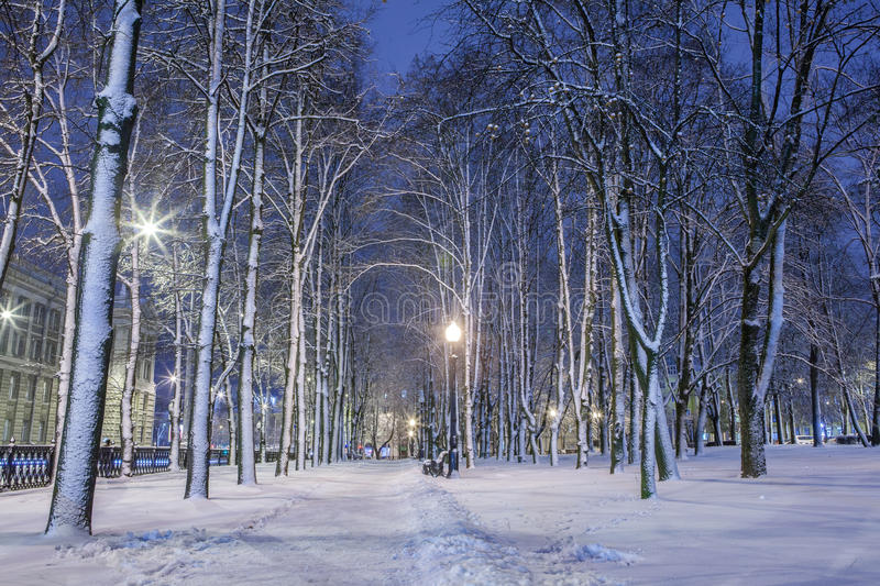 Download Winter in the night city stock photo. Image of lamps - 83712698