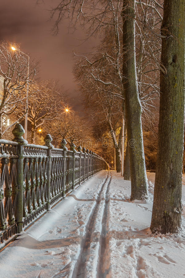 Download Winter in the night city stock image. Image of lights - 83712805