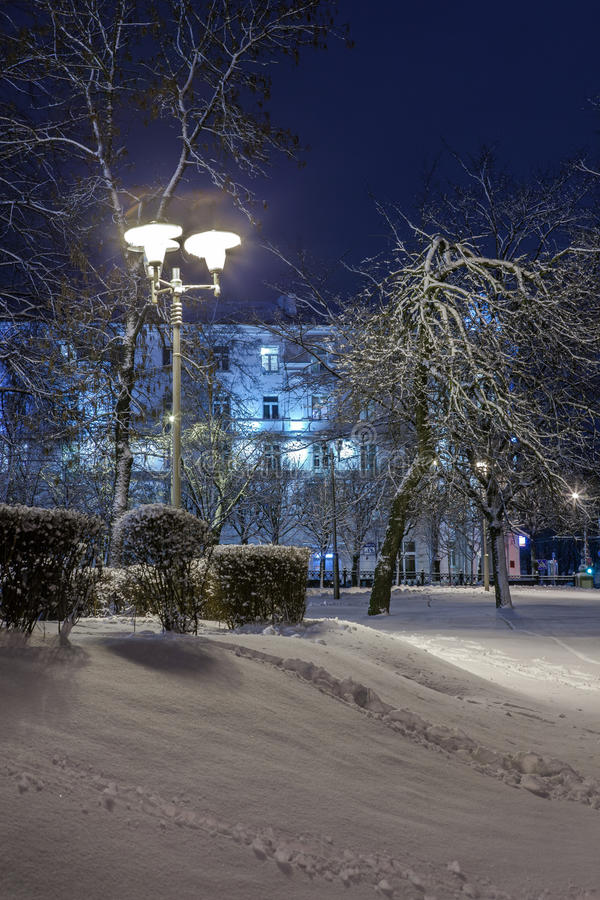 Download Winter In The Night City Stock Photo - Image: 83712968