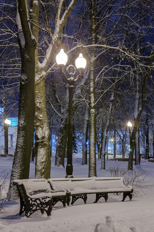 Download Winter In The Night City Stock Photo - Image: 83713092