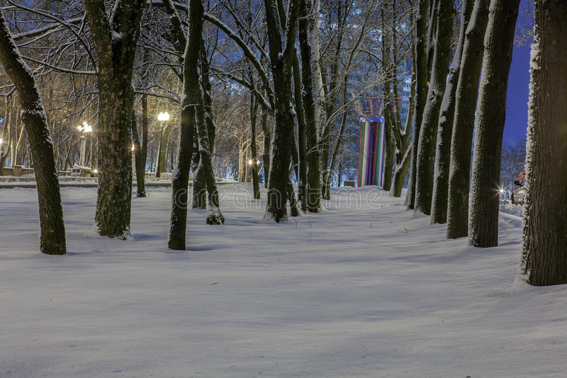 Download Winter In The Night City Stock Photo - Image: 83713520