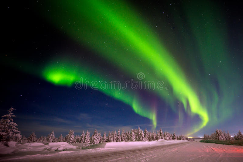 Winter night landscape with forest, road and polar light over the trees. stock photography