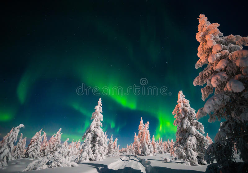 Winter night landscape with forest, road and polar light over the trees. royalty free stock images