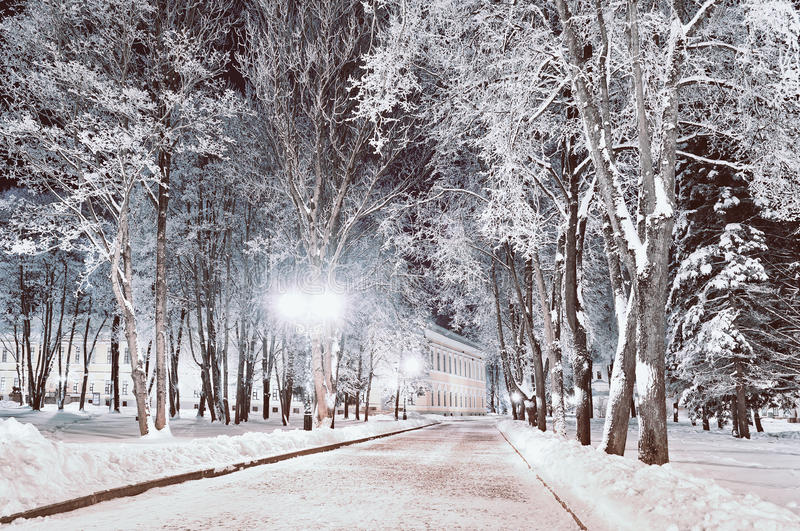 Winter night landscape- winter alley in the park with winter frosty trees and shining lanterns stock photo