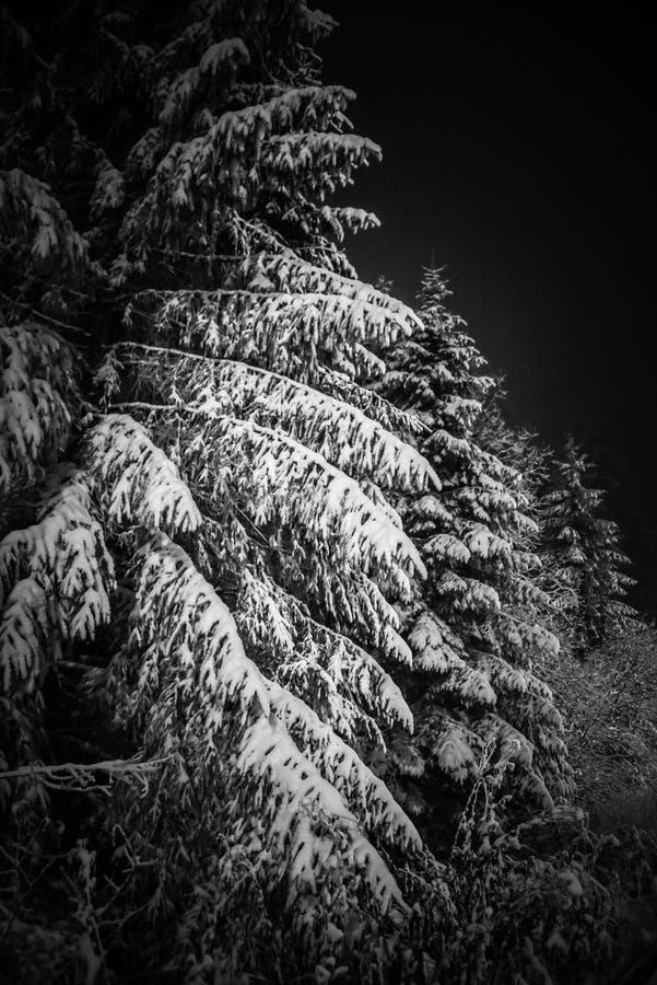 Winter romanian night stock photography