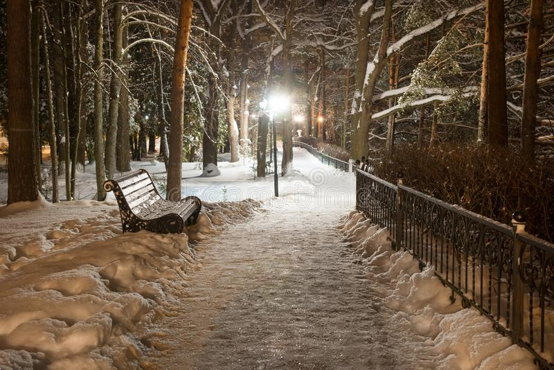 Winter night in the park. Places to walk in the winter park on a cold snowy late evening stock photos