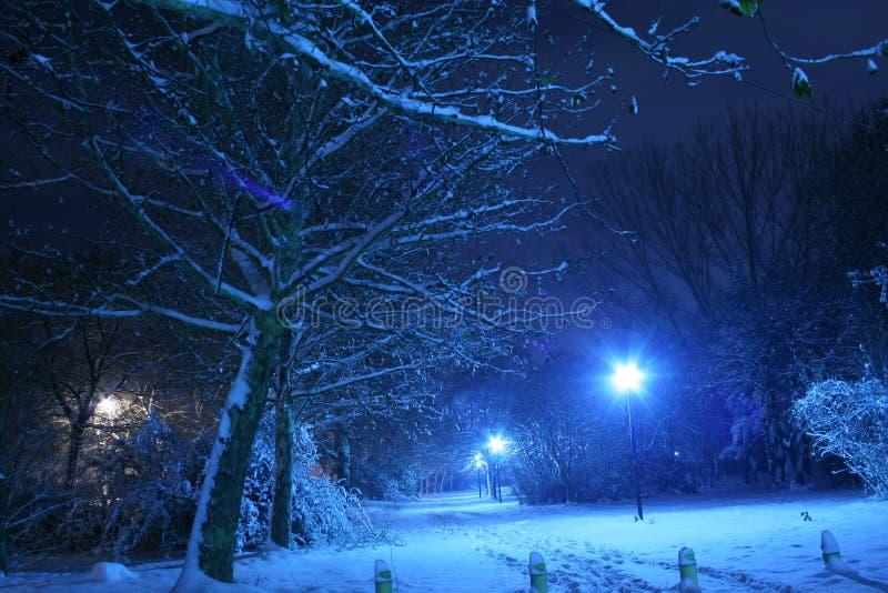 Winter night scene stock images