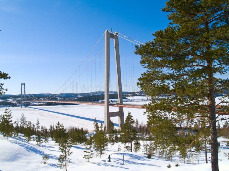 Winter in Nordschweden stockbilder