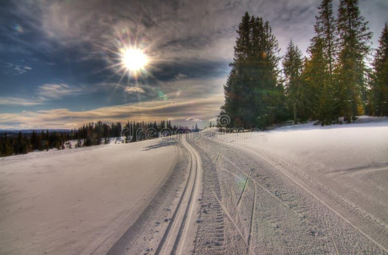 Winter in Norwegen lizenzfreies stockbild