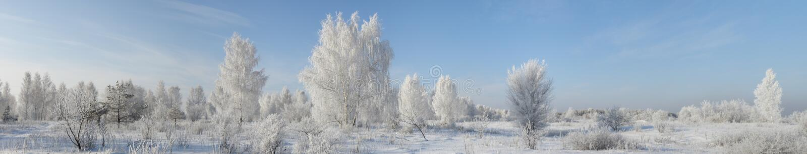 Winter-Panorama stockbild