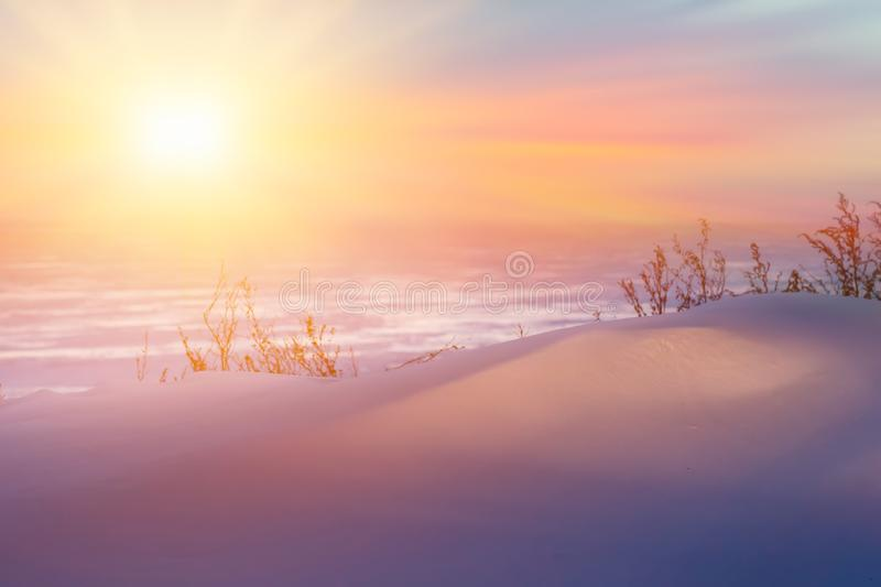Winter landscape with fiald, trees covered snow and sunrise. winterly morning of a new day. purple winter landscape with sunset,. Winter panorama landscape with royalty free stock image