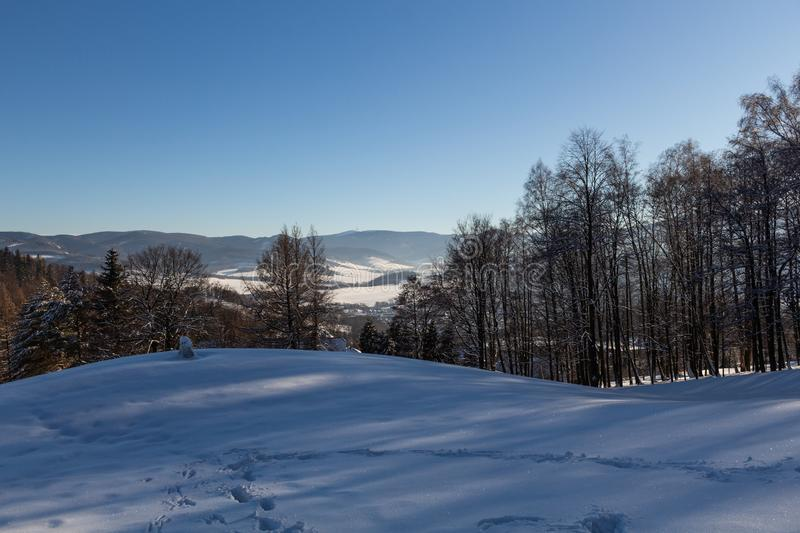 Winter panorama landscape with forest, trees covered snow and sunrise. winterly morning of a new day. winter landscape with sunset. Panoramic view royalty free stock photo