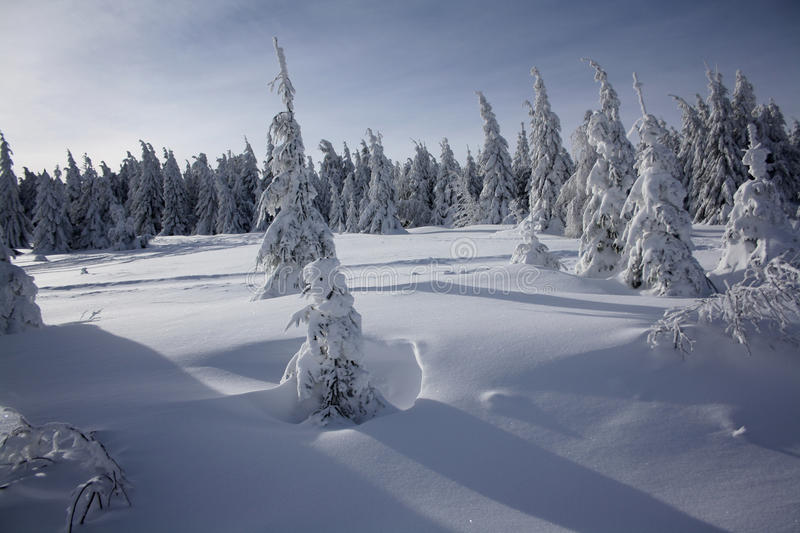 Winter paradise royalty free stock images