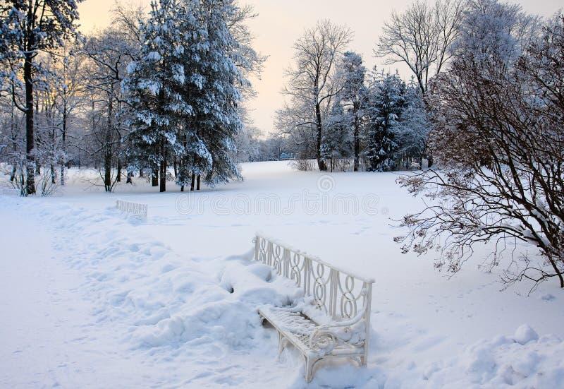 Download Winter park stock image. Image of winter, evening, seasonal - 12803023