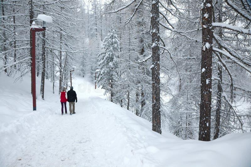 Winter-Park lizenzfreies stockbild