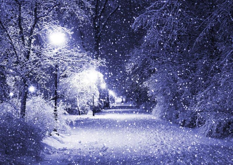 Download Winter Park Stock Photos - Image: 20586873