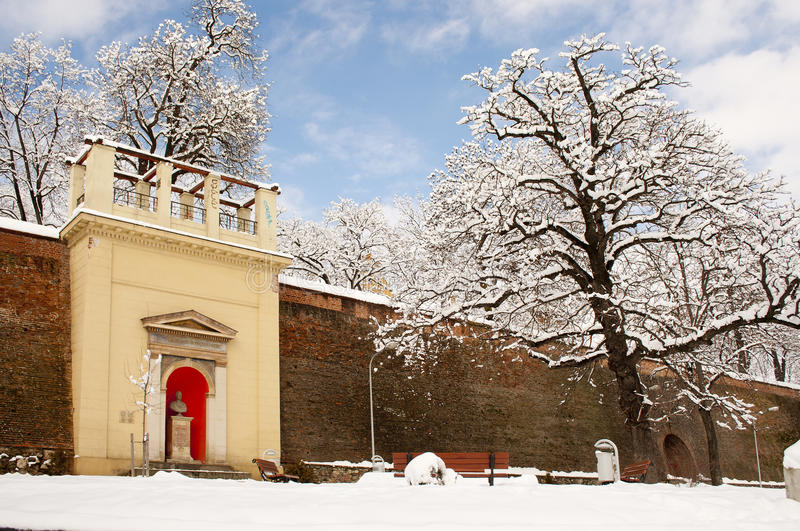 Download Winter park stock photo. Image of wall, city, tree, transylvania - 20611156