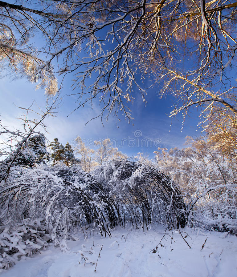 Download Winter Park Royalty Free Stock Photo - Image: 22214965