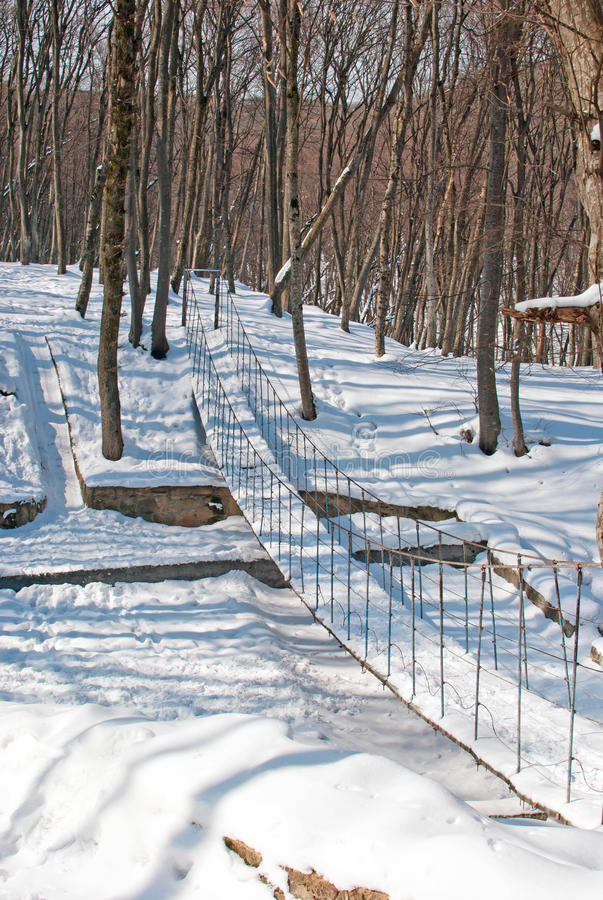 Download Winter in the Park stock photo. Image of lake, cold, snow - 23762984