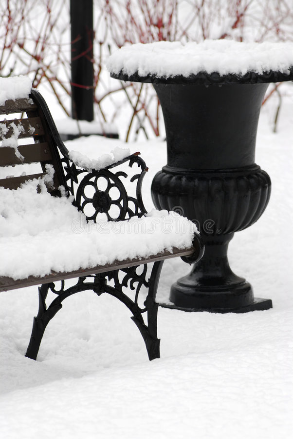 Download Winter park stock image. Image of white, natural, seasonal - 3294521