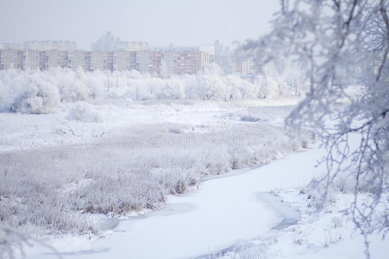 Winter Park. Bushes and trees are covered with thick frost. Visible icebound river.  stock image