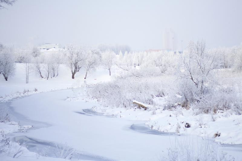 Winter Park. Bushes and trees are covered with thick frost. Visible icebound river.  royalty free stock image