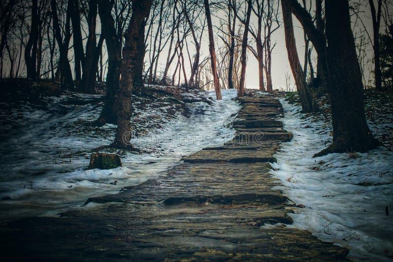 Stairway in Chisinau park. Retro old park scene. stock photo