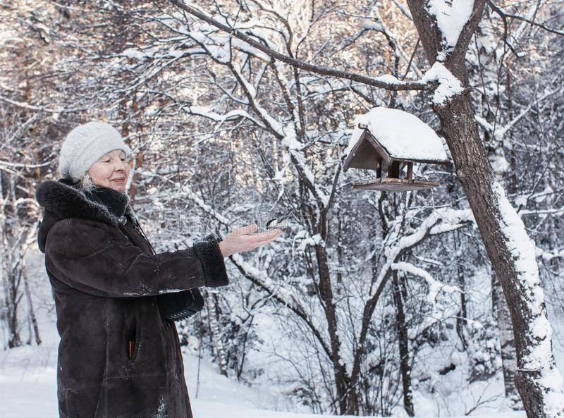 In the winter park. The lady feeds the birds with hands in a snowy park stock image