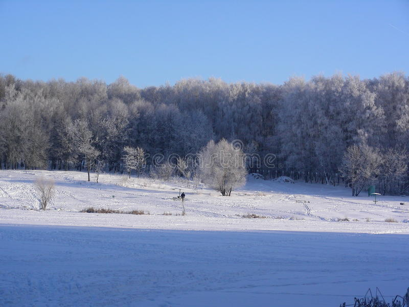 Winter, park, meadow, snow, frost, sun, slope royalty free stock photo