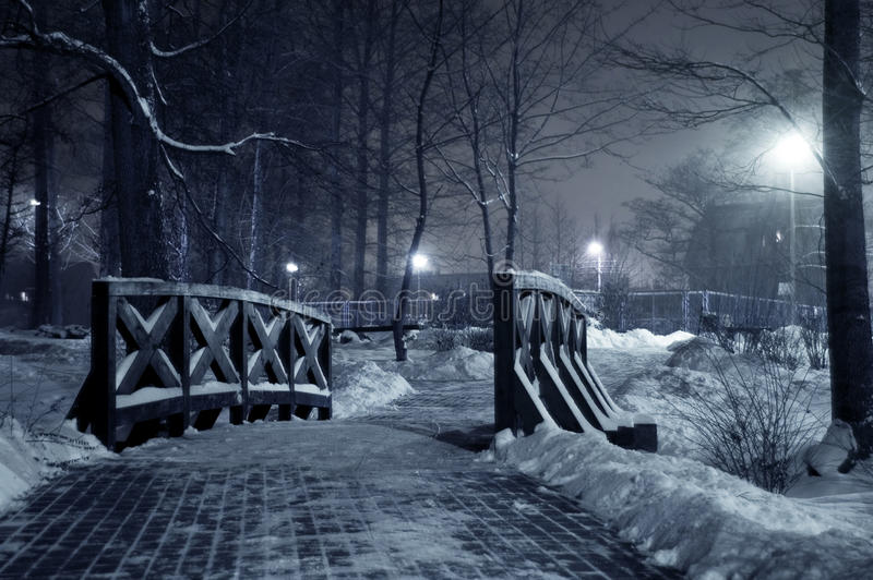 Winter park at night. stock photo