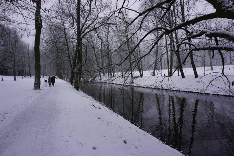 Winter in Park 12 stock image