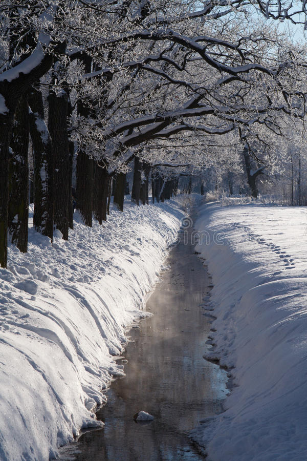 Download Winter park stream in snow stock image. Image of frozen - 13083239