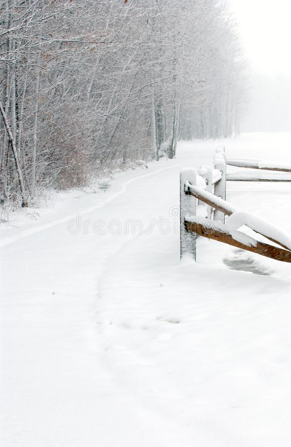 Download Winter Path stock image. Image of covered, branches, fence - 58675