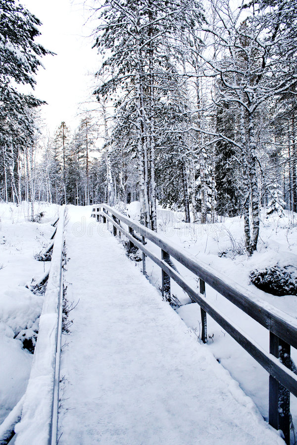 Free Winter Path Stock Images - 6852204