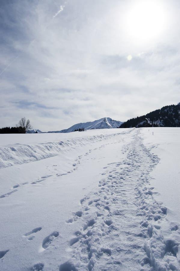 Download Winter Path stock image. Image of snow, walk, snowy, peak - 8415027
