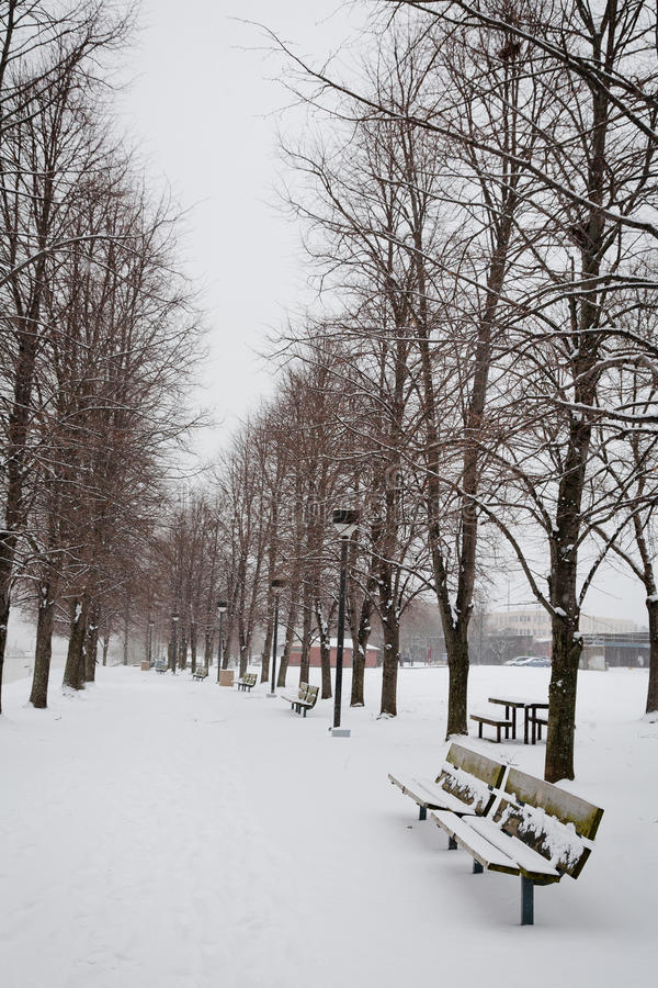 Free Winter Path In The Park Stock Image - 30589801