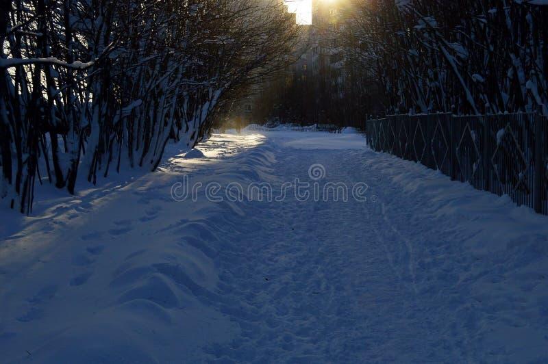 Winter pathway stock photo