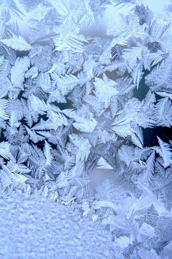 Winter pattern. Winter natural pattern on window royalty free stock photos