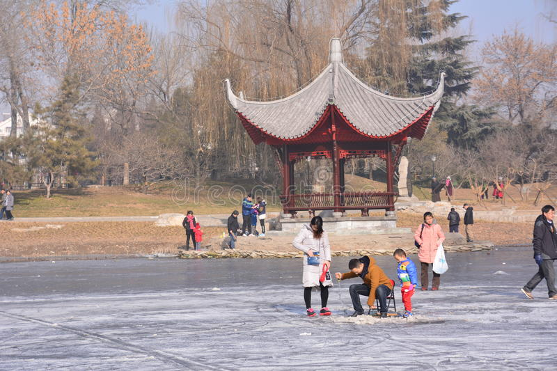 Winter in Peking-Park lizenzfreie stockfotografie