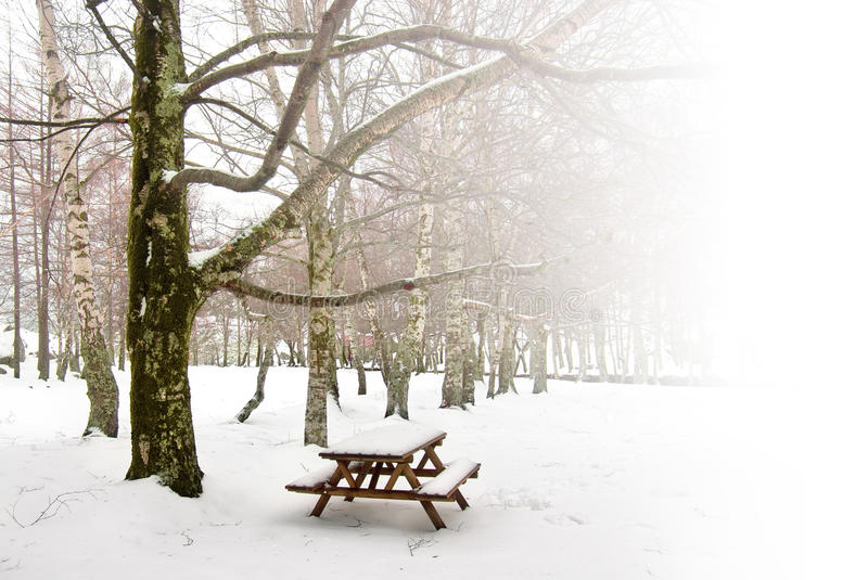 Winter Picnic. Winter park with a single picnic table covered with snow royalty free stock image