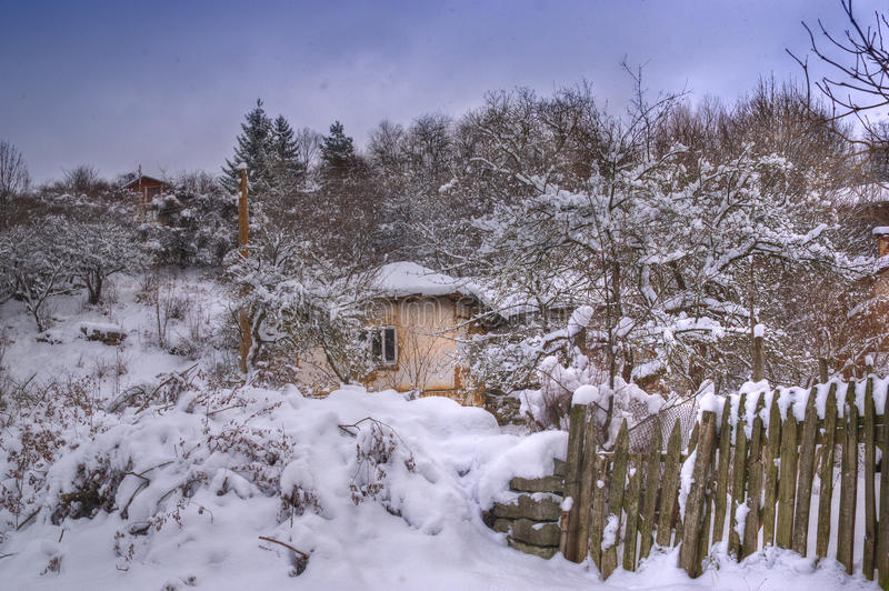Winter picture - snowing stock photography
