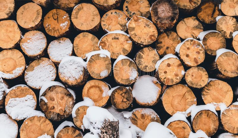 Dry sawn wood and snow. Natural background in rustic style royalty free stock photos