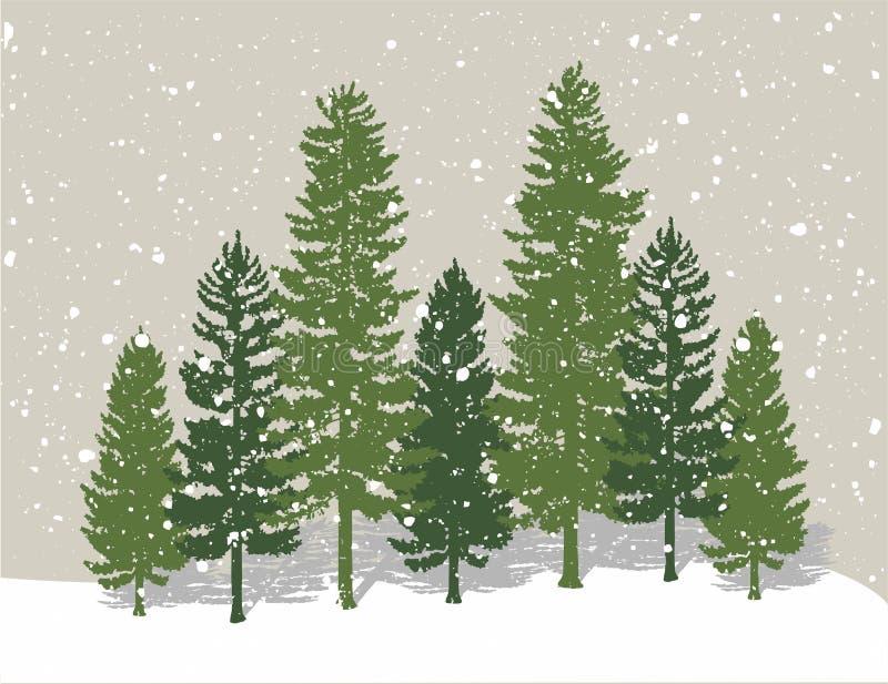 Winter pine trees royalty free illustration